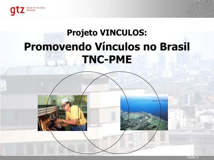 Projeto VINCULOS: