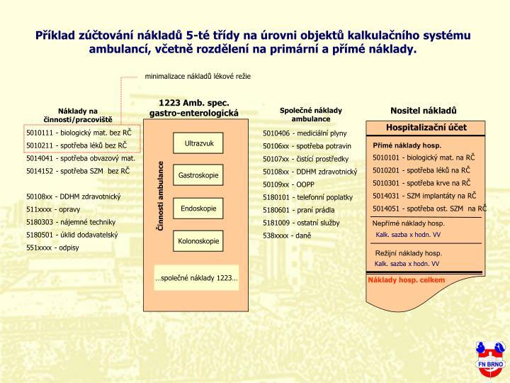 Pklad ztovn nklad 5-t tdy na rovni objekt kalkulanho systmu ambulanc, vetn rozdlen na primrn a pm nklady.