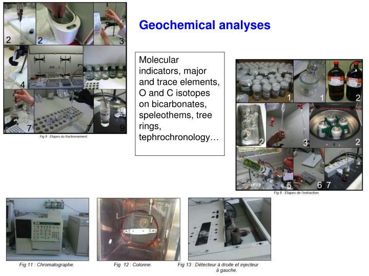 Geochemical analyses