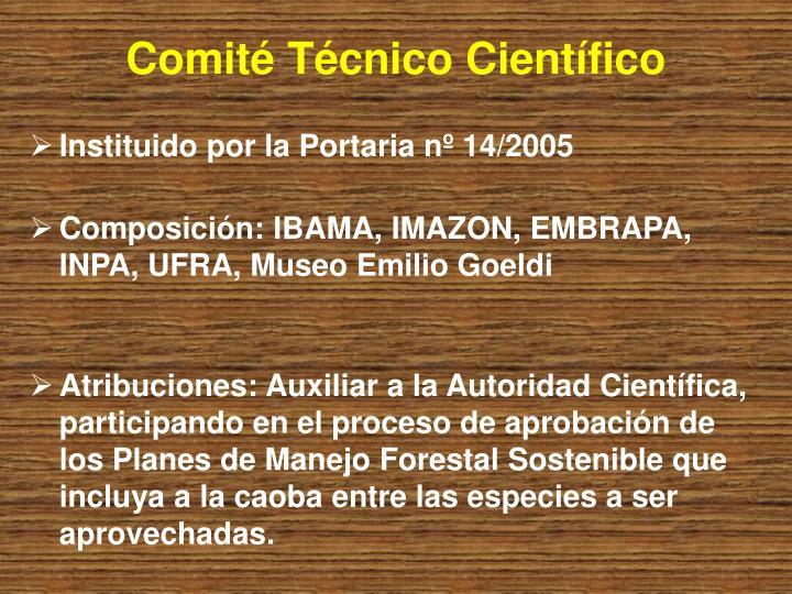 Comité Técnico Científico