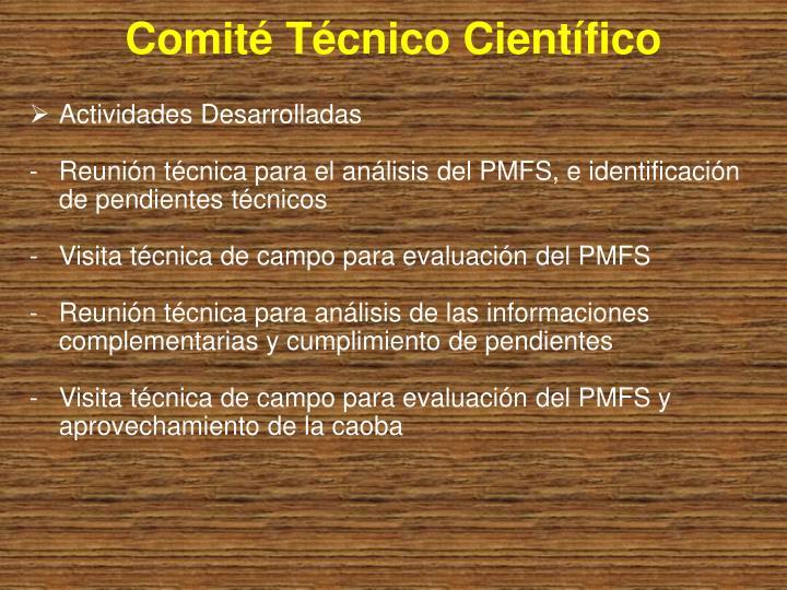 Comité Técnico