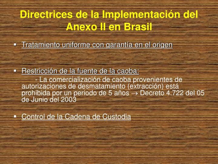 Directrices de la Implementación del Anexo II en Brasil
