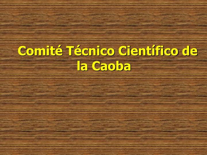 Comité Técnico Científico de la Caoba