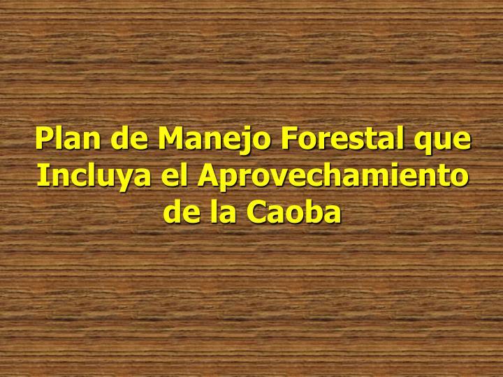 Plan de Manejo Forestal que Incluya el Aprovechamiento de la Caoba