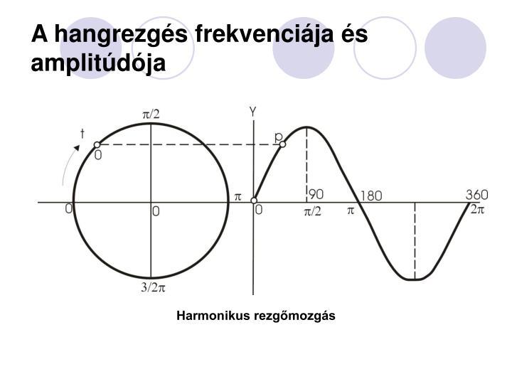 A hangrezgés frekvenciája és amplitúdója