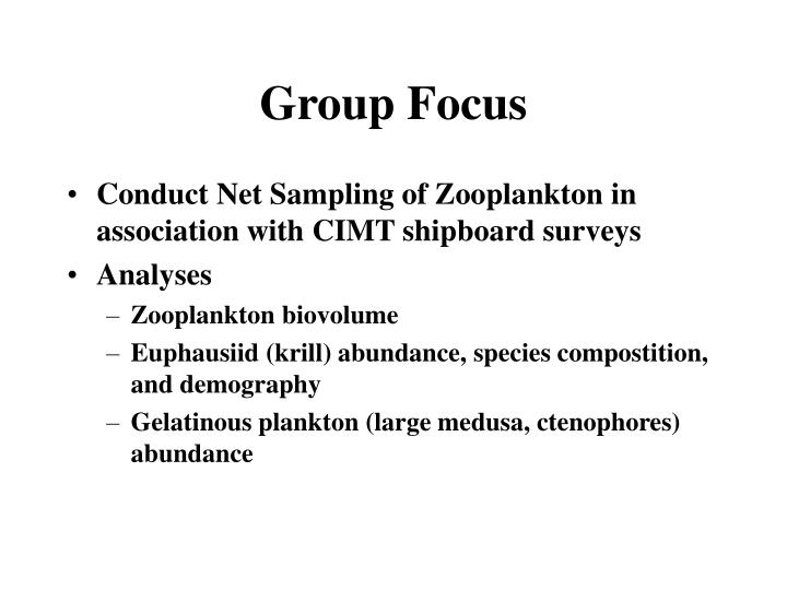 Group focus