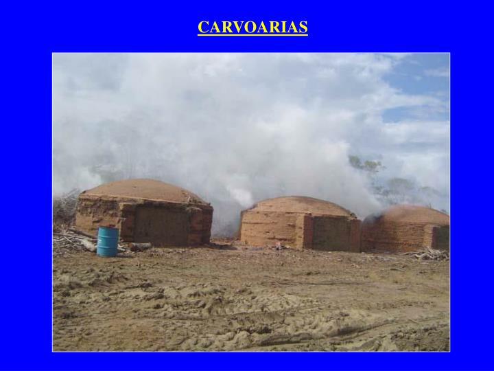 CARVOARIAS