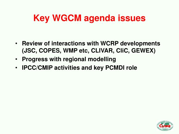 Key wgcm agenda issues
