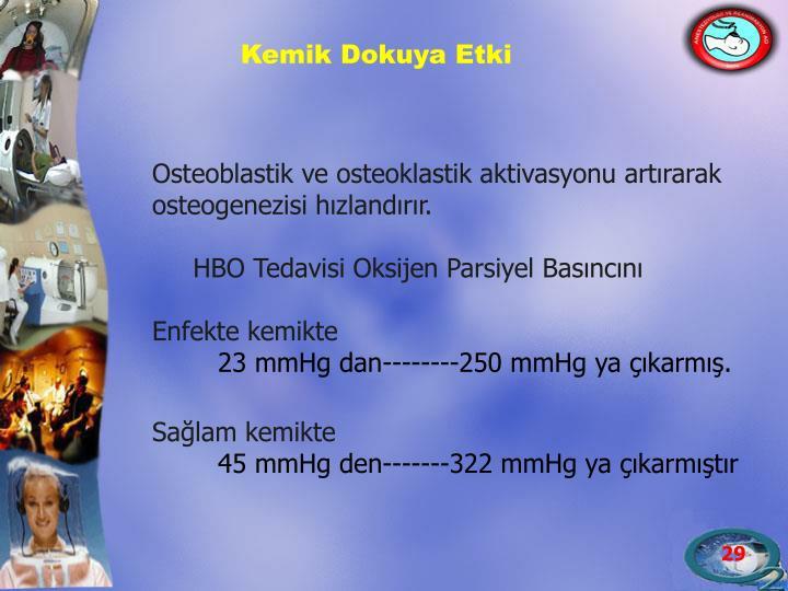 Osteoblastik ve osteoklastik aktivasyonu artırarak osteogenezisi hızlandırır.