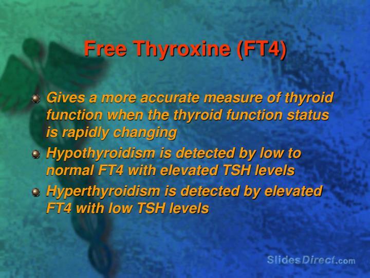 Free Thyroxine (FT4)