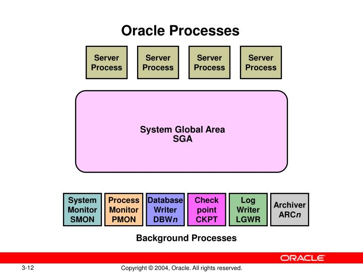 Oracle Processes