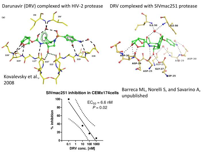 Darunavir (DRV) complexed with HIV-2 protease