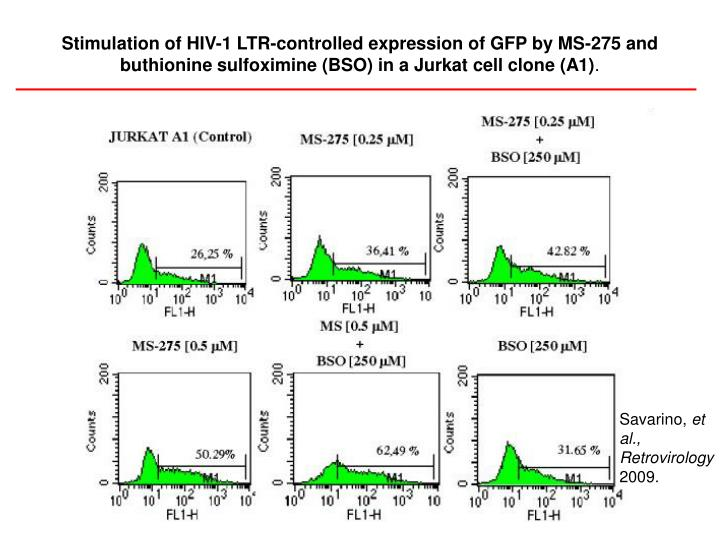 Stimulation of HIV-1 LTR-controlled expression of GFP by MS-275 and buthionine sulfoximine (BSO) in a Jurkat cell clone (A1)