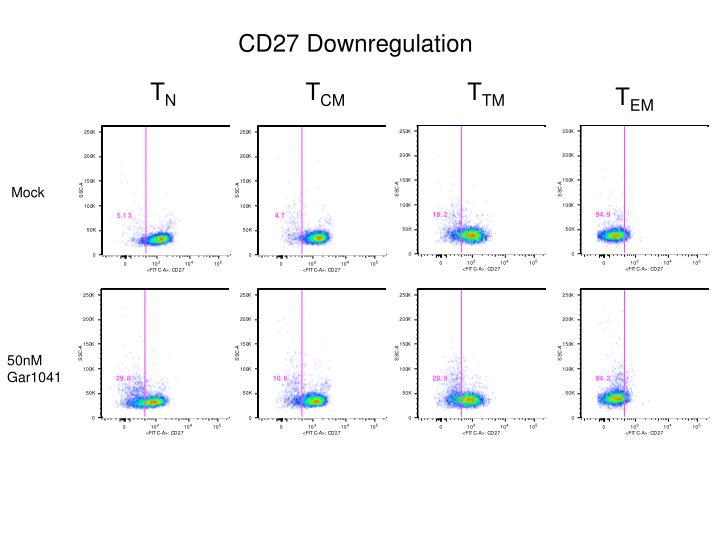 CD27 Downregulation