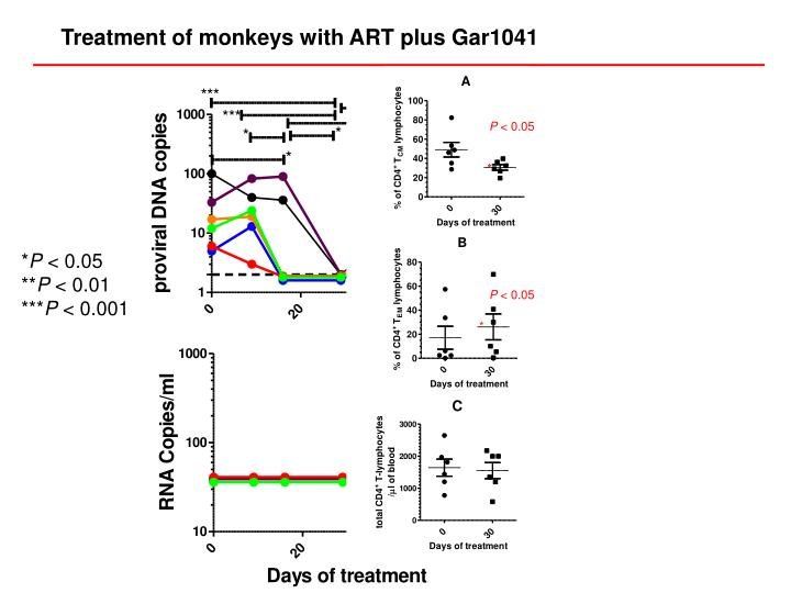 Treatment of monkeys with ART plus Gar1041