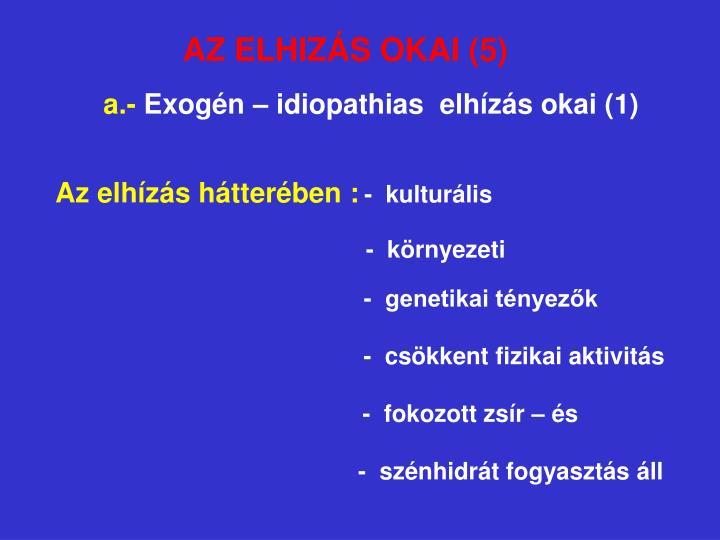 AZ ELHIZÁS OKAI (5)