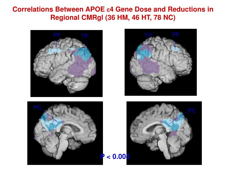 Correlations Between APOE