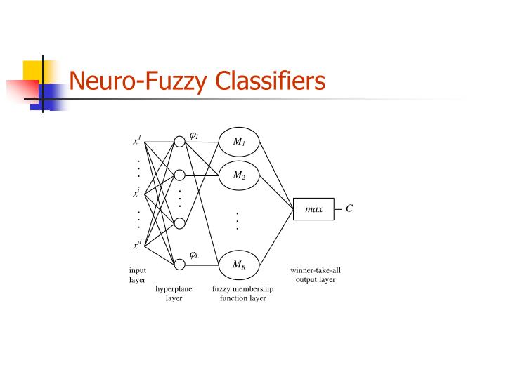 Neuro-Fuzzy Classifiers