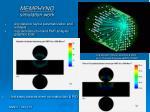 memphyno simulation work
