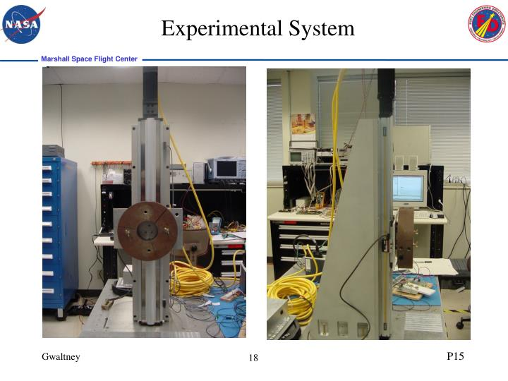 Experimental System