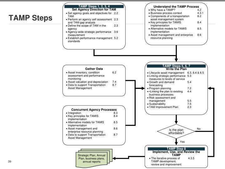 TAMP Steps