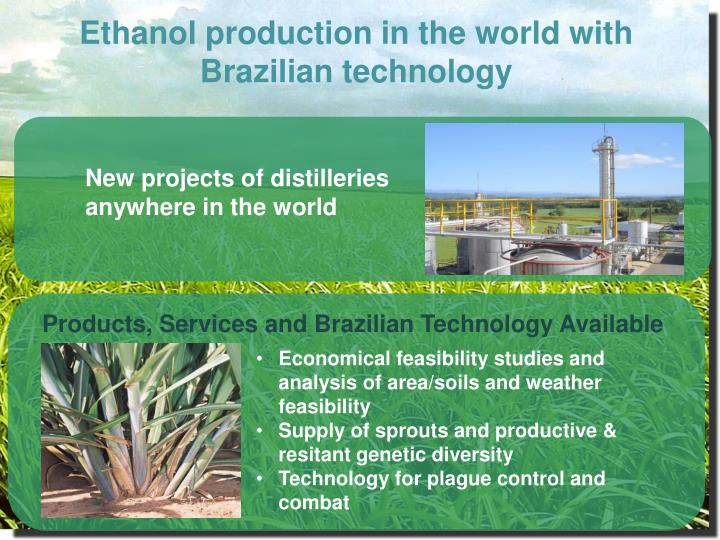 Ethanol production in the world with Brazilian technology