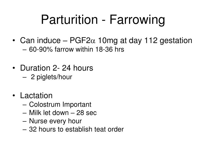 Parturition - Farrowing