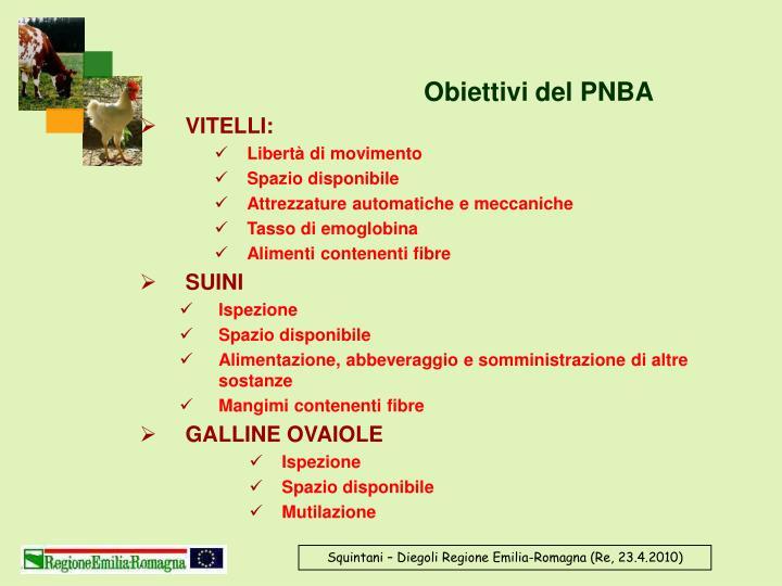 Obiettivi del PNBA