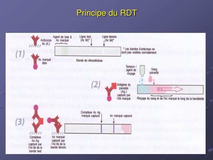 Principe du RDT