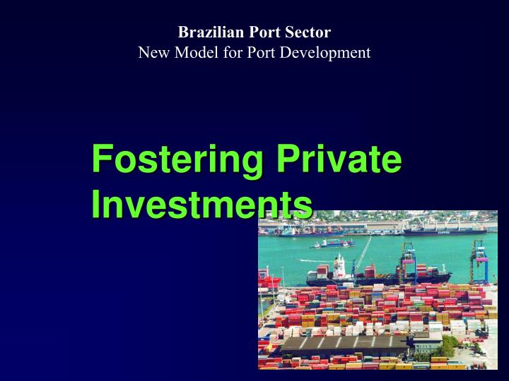 Fostering Private Investments