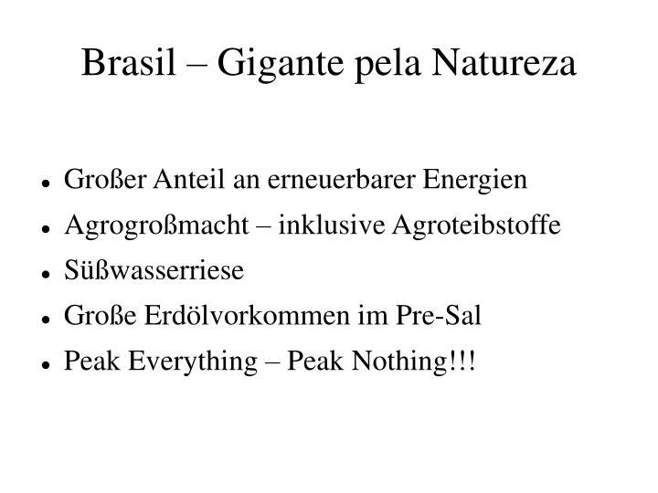 Brasil – Gigante pela Natureza
