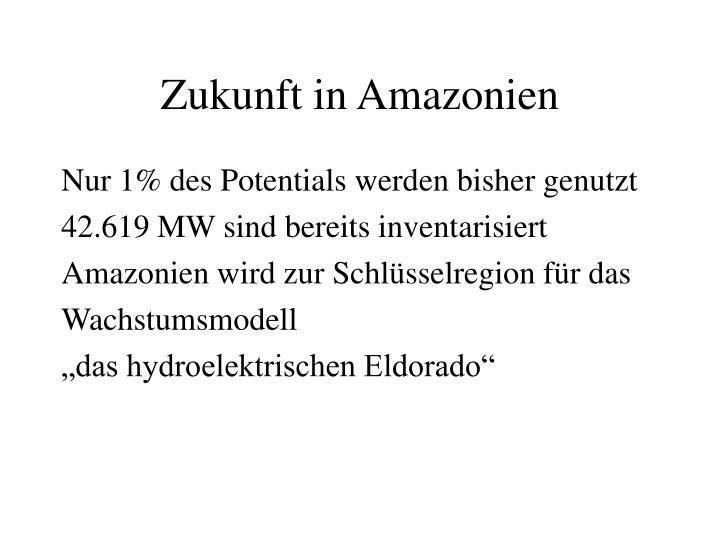 Zukunft in Amazonien