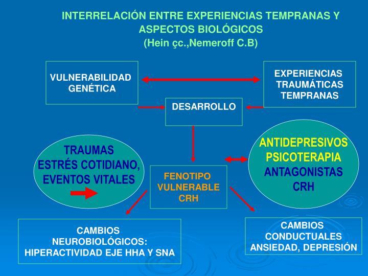 INTERRELACIÓN ENTRE EXPERIENCIAS TEMPRANAS Y ASPECTOS BIOLÓGICOS