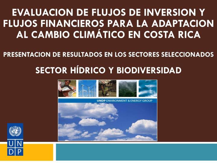 EVALUACION DE FLUJOS DE INVERSION Y FLUJOS FINANCIEROS PARA LA ADAPTACION AL CAMBIO CLIMÁTICO EN COSTA RICA