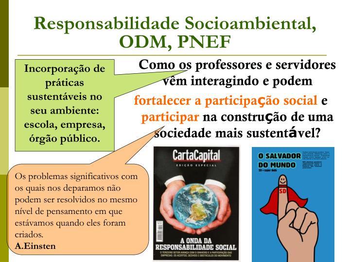 Responsabilidade Socioambiental, ODM, PNEF