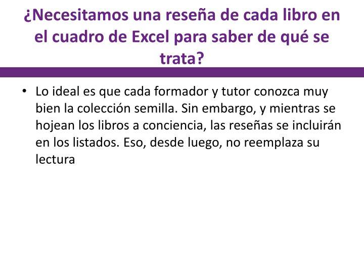 ¿Necesitamos una reseña de cada libro en el cuadro de Excel para saber de qué se trata?