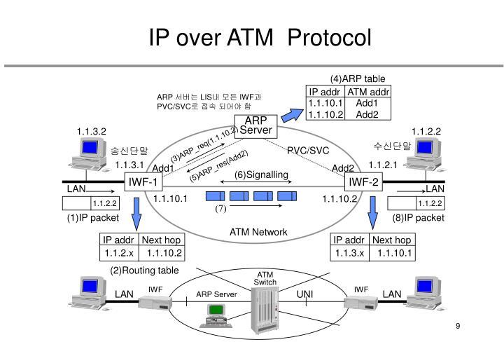 (4)ARP table