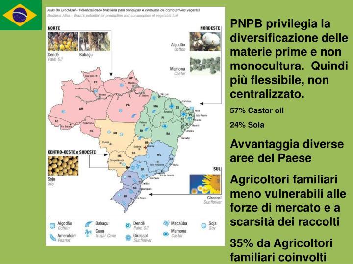 PNPB privilegia la diversificazione delle materie prime e non monocultura.  Quindi più flessibile, non centralizzato.