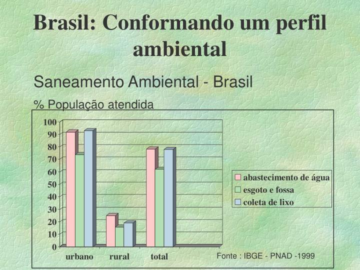 Brasil: Conformando um perfil ambiental