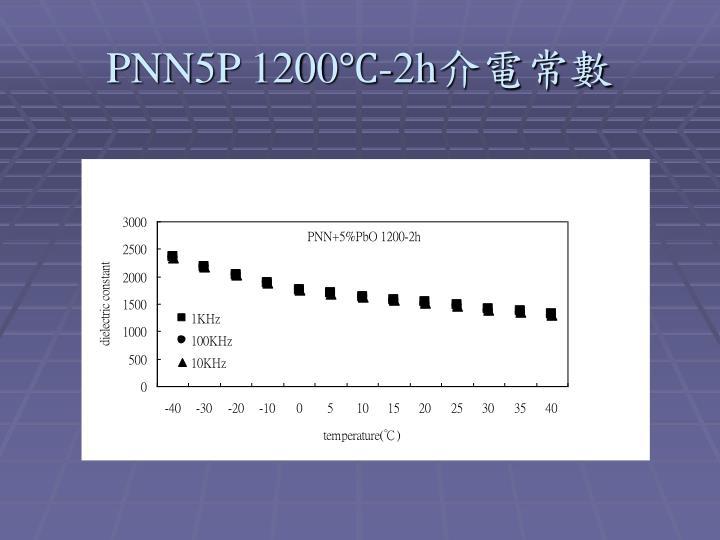PNN5P 1200℃-2h