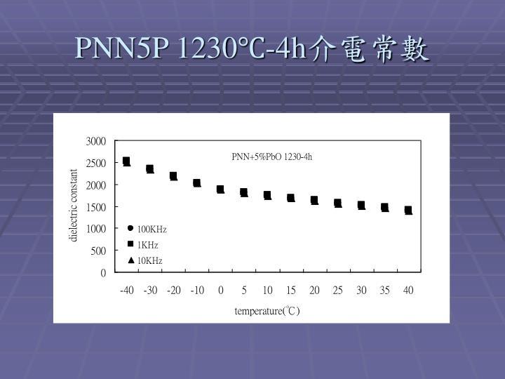 PNN5P 1230℃-4h