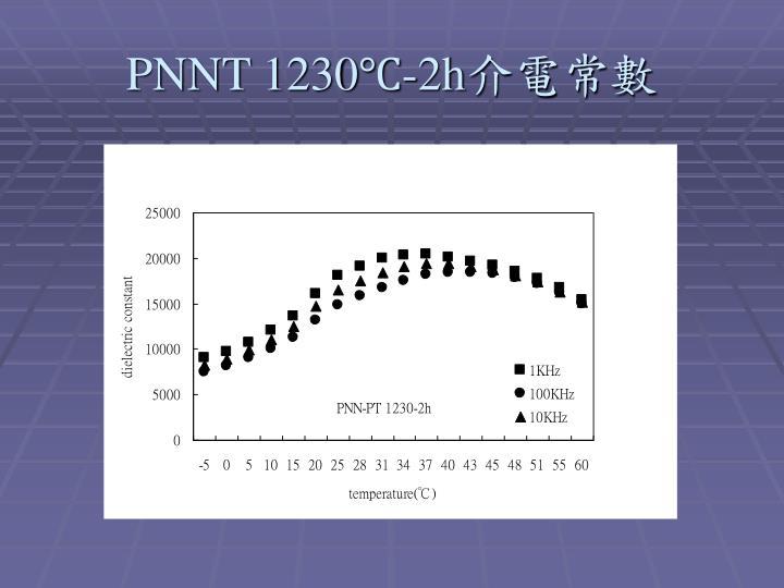 PNNT 1230℃-2h