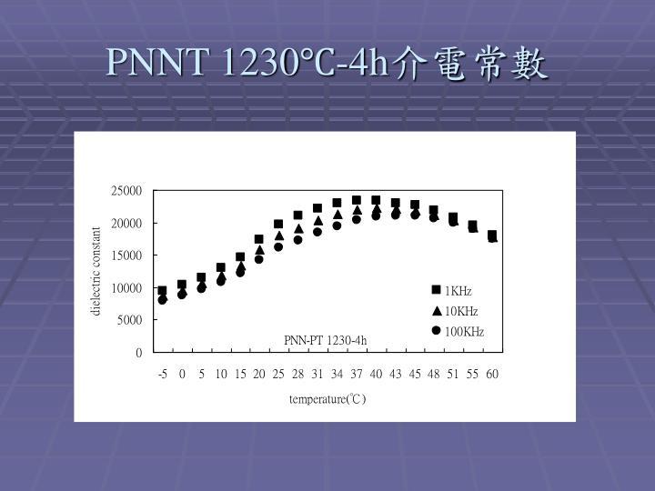 PNNT 1230℃-4h