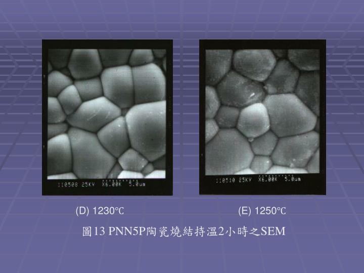 (D) 1230℃                  (E) 1250℃