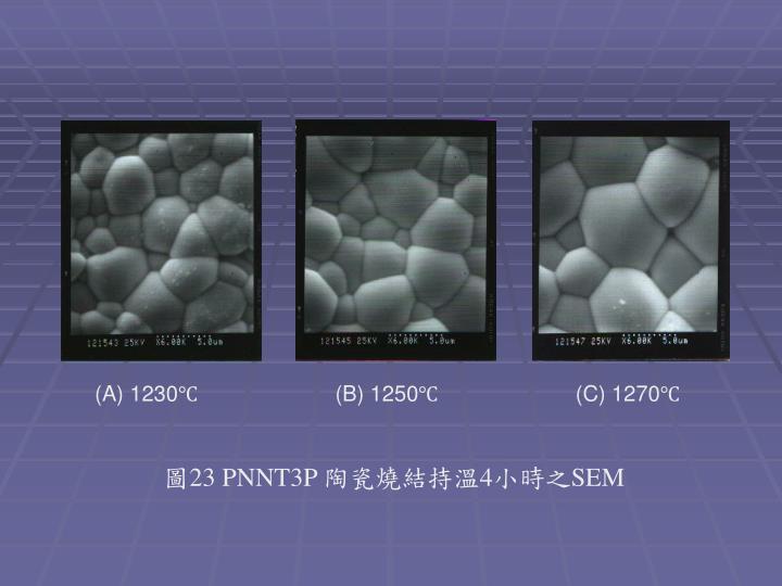 (A) 1230℃                       (B) 1250℃                       (C) 1270℃