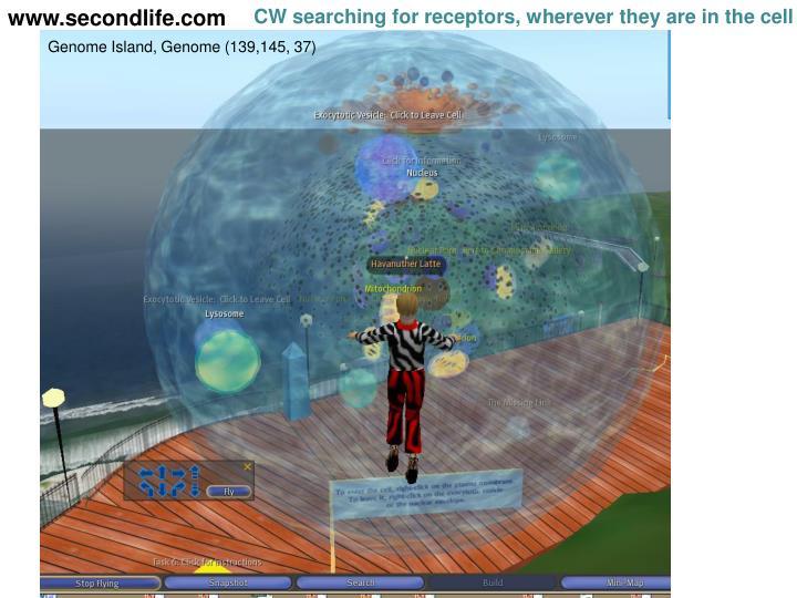www.secondlife.com