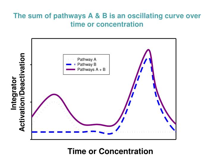 The sum of pathways A & B is an oscillating curve over time or concentration
