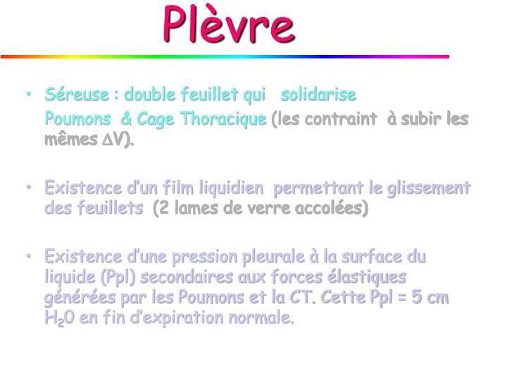 Plèvre
