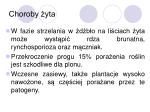 choroby yta2