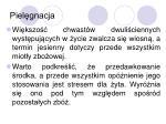 piel gnacja1